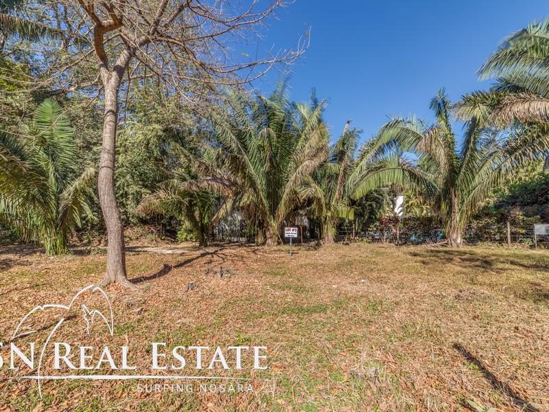 Nosara-Costa-Rica-property-dominicalrealty10065-7.jpg