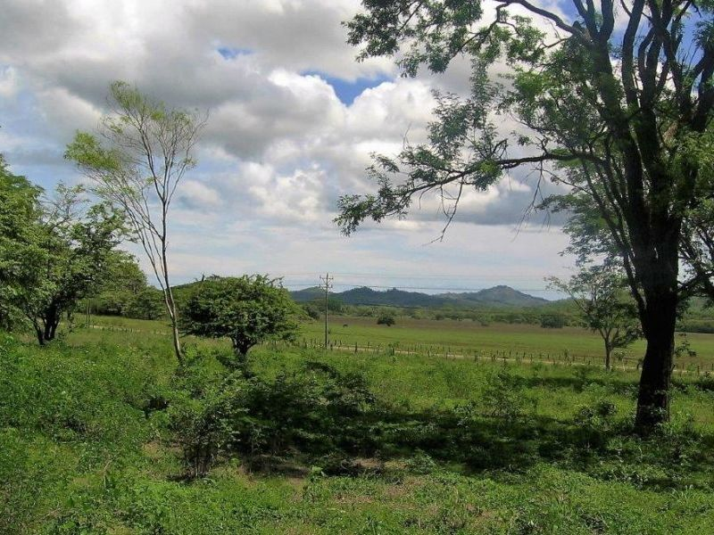 Tamarindo-Costa-Rica-property-dominicalrealty10116-5.JPEG