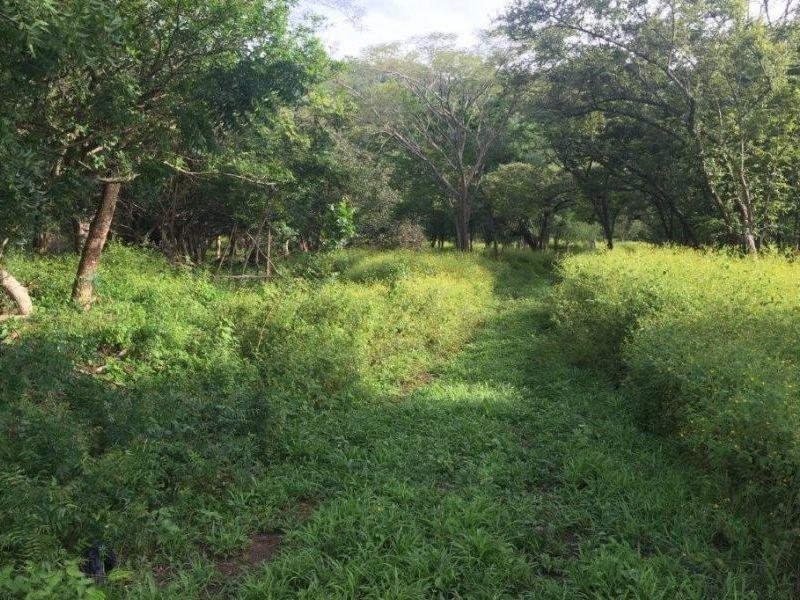 Tamarindo-Costa-Rica-property-dominicalrealty10116-6.JPEG