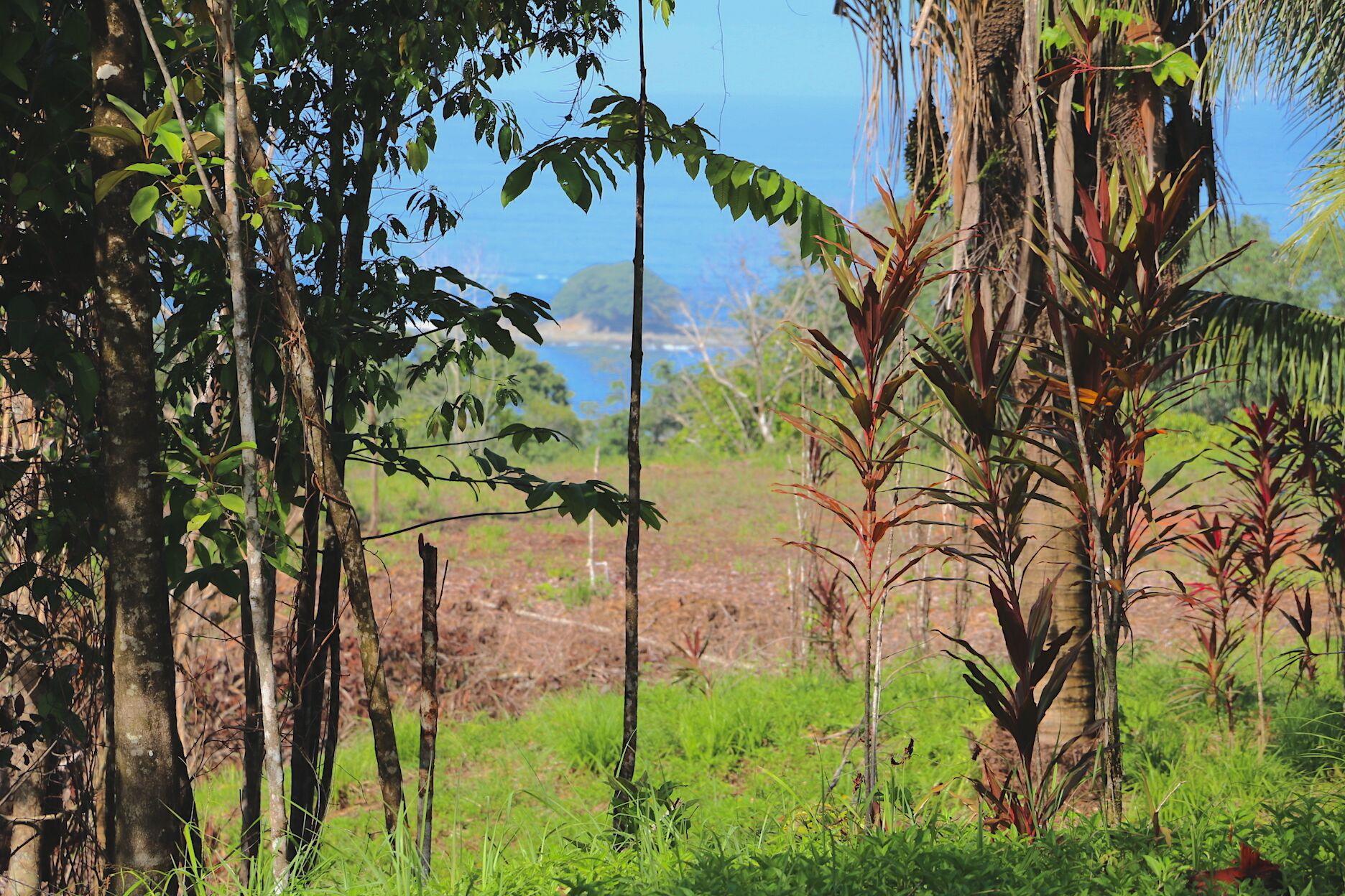 Dominical-Costa-Rica-property-costaricarealestateDOM335-11.jpeg