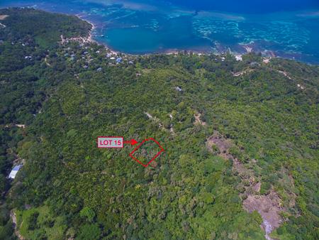 Roatan-Honduras-property-roatanlife1224-10.jpg