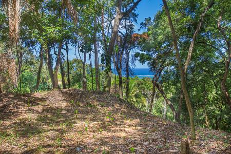 Roatan-Honduras-property-roatanlife1224-3.jpg