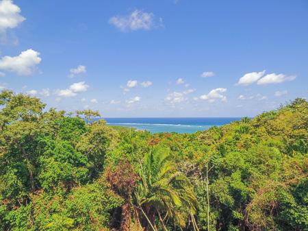 Roatan-Honduras-property-roatanlife1224-5.jpg