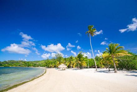 Roatan-Honduras-property-roatanlife1224-7.jpg