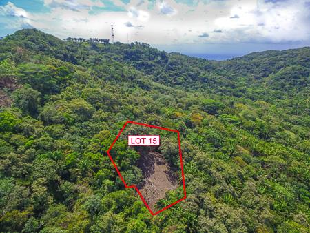 Roatan-Honduras-property-roatanlife1224-9.jpg
