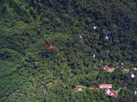 Roatan-Honduras-property-roatanlife1228-10.jpg