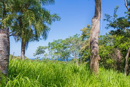 Roatan-Honduras-property-roatanlife1228-4.jpg