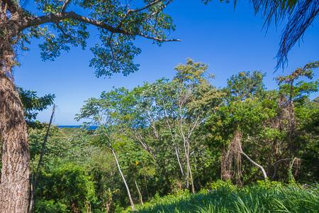 Roatan-Honduras-property-roatanlife1228-5.jpg