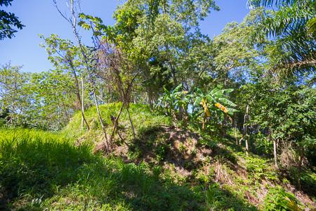 Roatan-Honduras-property-roatanlife1228-7.jpg
