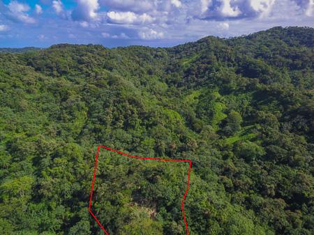 Roatan-Honduras-property-roatanlife1228-8.jpg