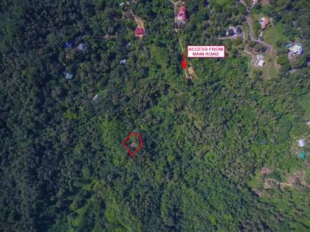 Roatan-Honduras-property-roatanlife1228-9.jpg