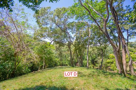 Roatan-Honduras-property-roatanlife1231-1.jpg