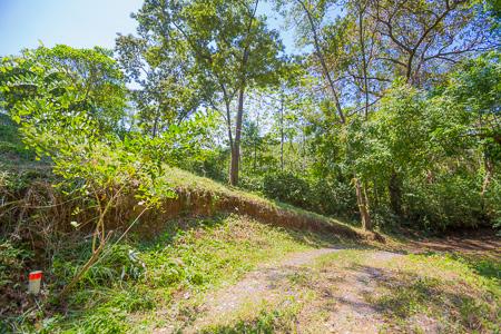 Roatan-Honduras-property-roatanlife1231-4.jpg