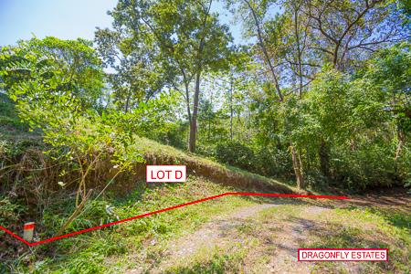 Roatan-Honduras-property-roatanlife1231-5.jpg