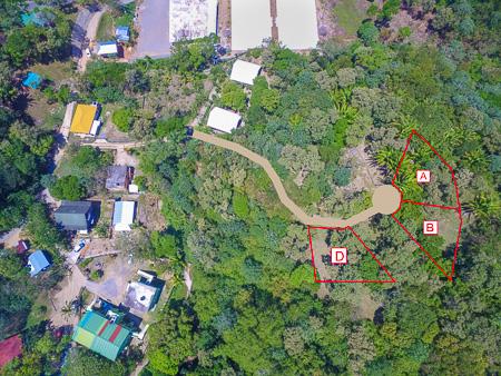 Roatan-Honduras-property-roatanlife1231-9.jpg
