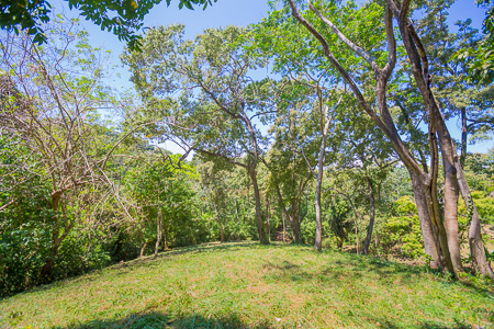 Roatan-Honduras-property-roatanlife1231.jpg