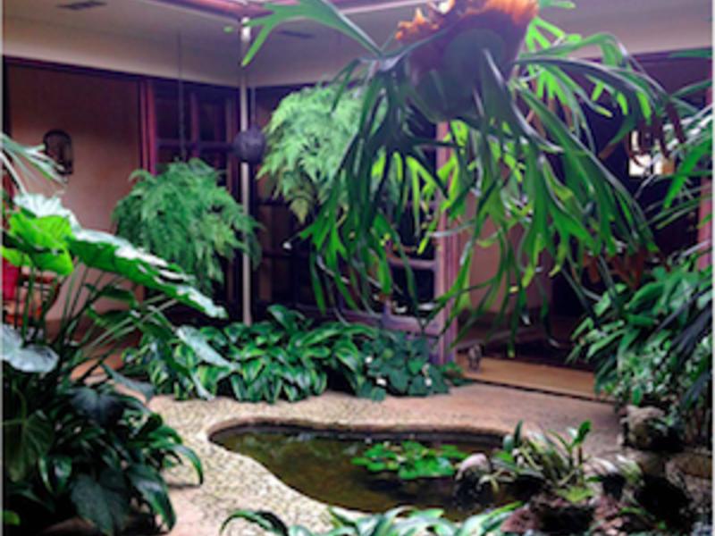 Escazu-Costa-Rica-property-dominicalrealty7459-4.png
