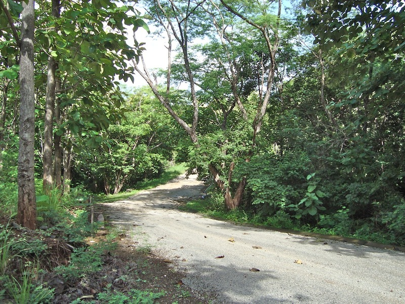 Tamarindo-Costa-Rica-property-dominicalrealty10253-10.JPG