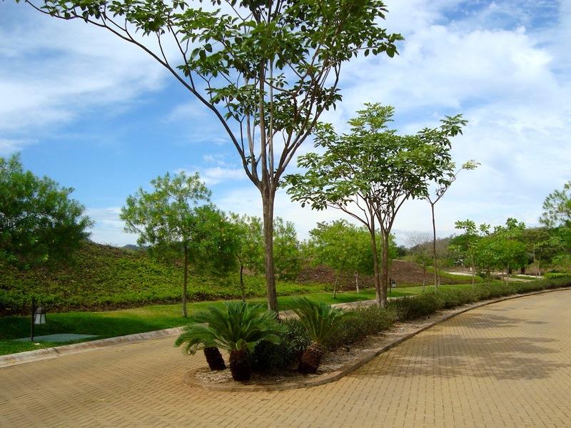 Tamarindo-Costa-Rica-property-dominicalrealty10253-11.JPG
