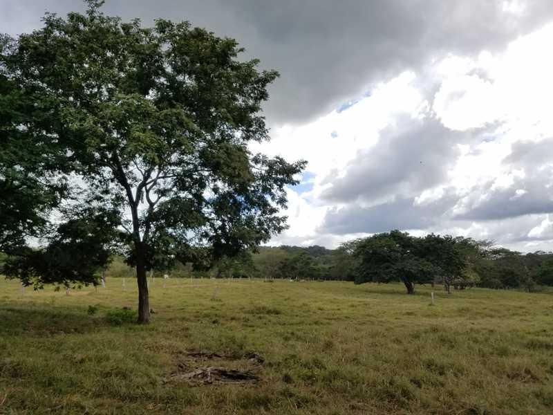 Matapalo-Costa-Rica-property-dominicalrealty10343-1.jpg