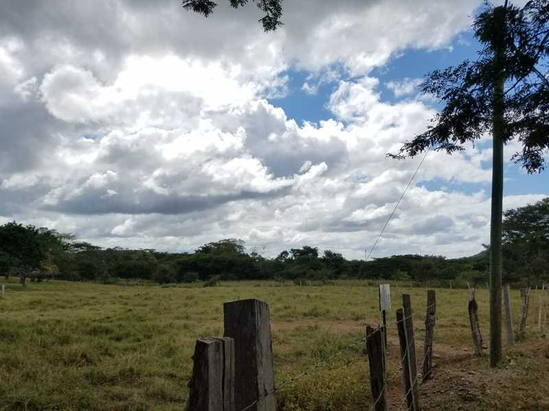 Matapalo-Costa-Rica-property-dominicalrealty10343-3.jpg