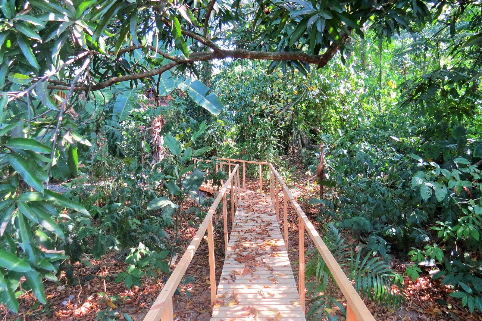 Uvita-Costa-Rica-property-costaricarealestateUVI300-8.jpeg