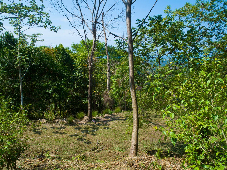 Uvita-Costa-Rica-property-costaricarealestateUVI299-2.jpeg