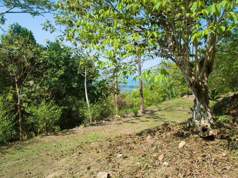 Uvita-Costa-Rica-property-costaricarealestateUVI299-3.jpeg