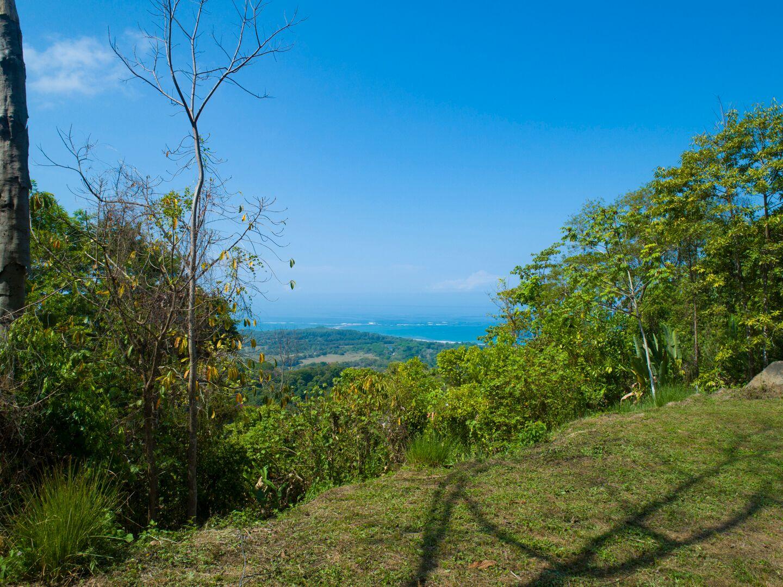 Uvita-Costa-Rica-property-costaricarealestateUVI299-6.jpeg