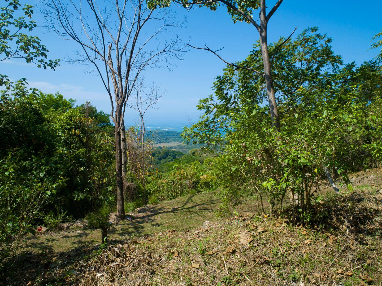 Uvita-Costa-Rica-property-costaricarealestateUVI299-8.jpeg