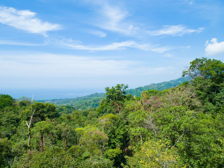 Uvita-Costa-Rica-property-costaricarealestateUVI298-4.jpeg