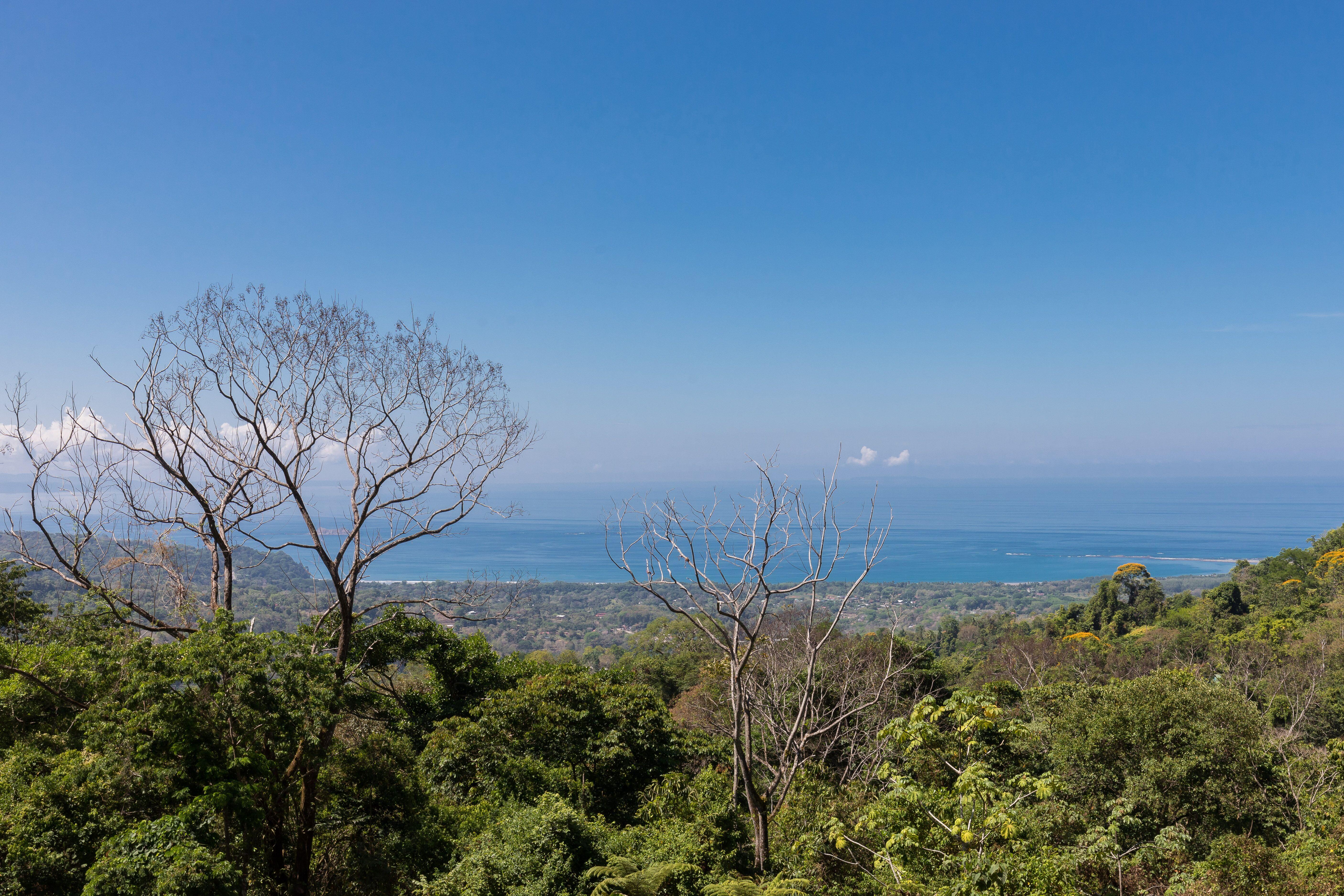 Uvita-Costa-Rica-property-costaricarealestateUVI297-11.jpeg