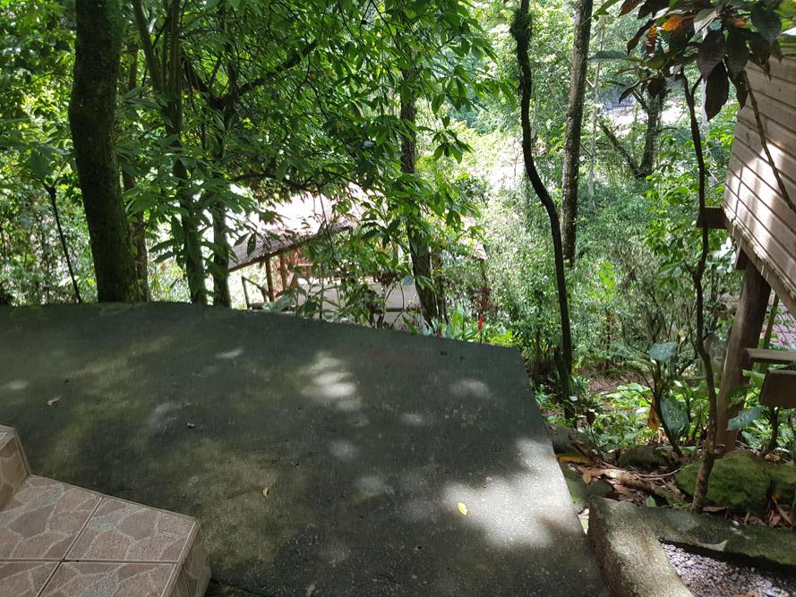 Roatan-Honduras-property-roatanlife18-500-6.jpg