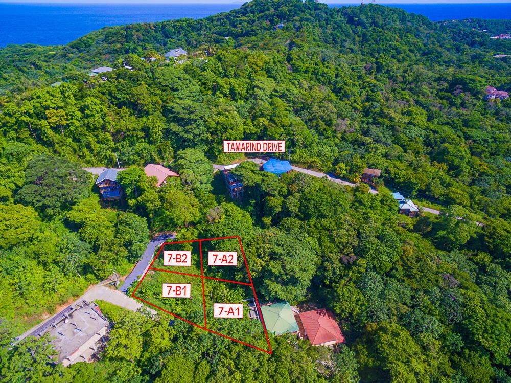 Roatan-Honduras-property-roatanlife18-463-1.jpg