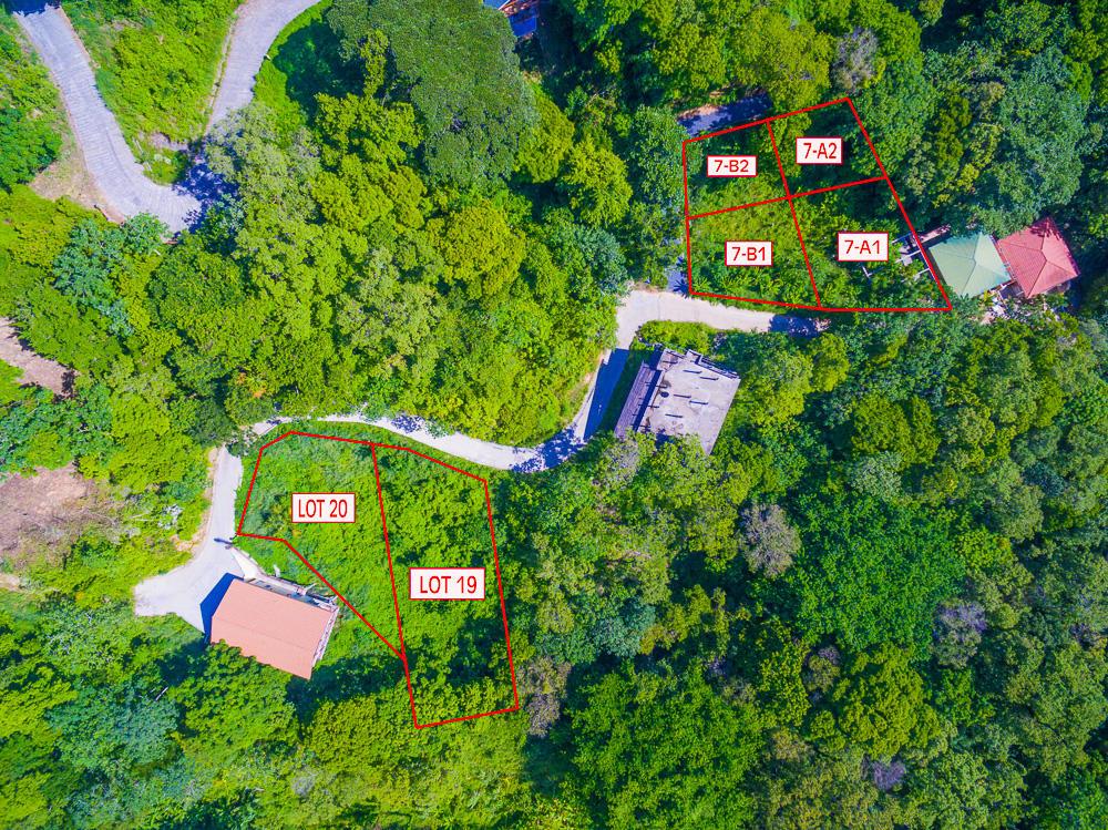 Roatan-Honduras-property-roatanlife18-465-4.jpg