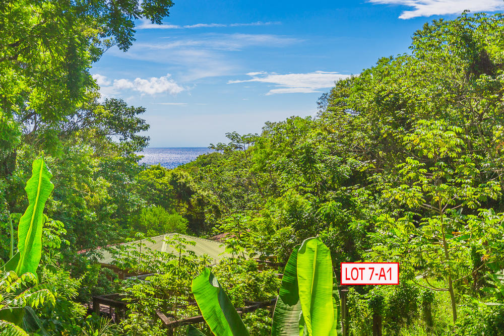 Roatan-Honduras-property-roatanlife18-465.jpg