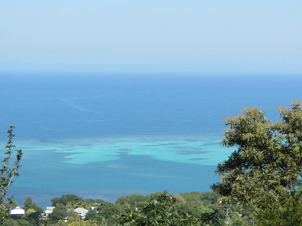 Roatan-Honduras-property-roatanlife16-530-1.jpg