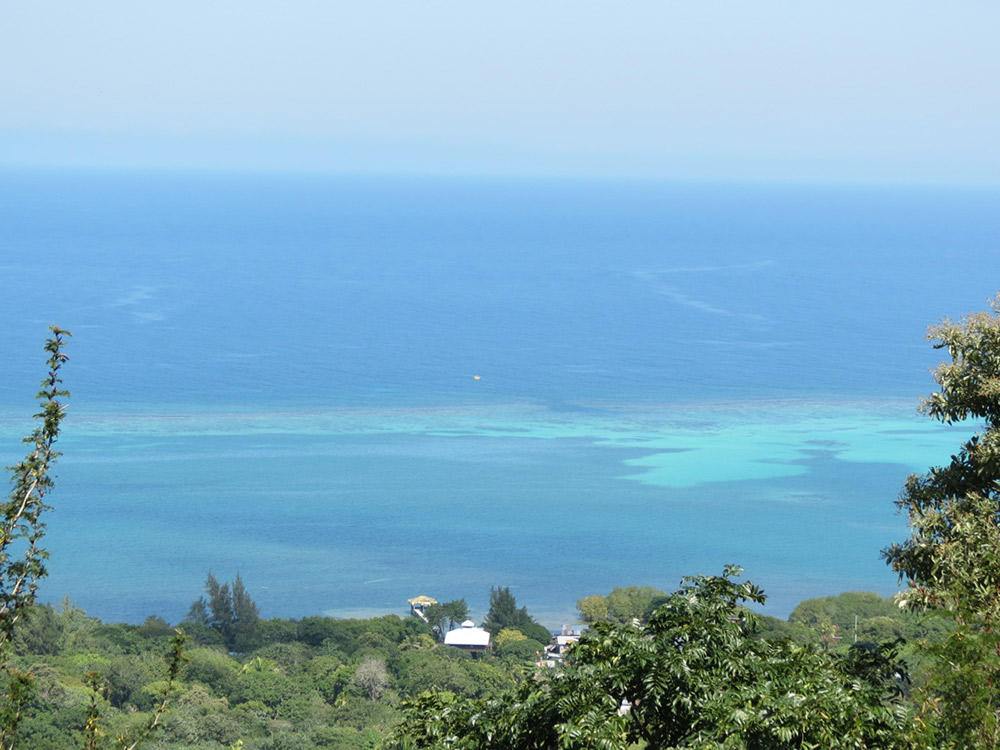 Roatan-Honduras-property-roatanlife16-530-4.jpg