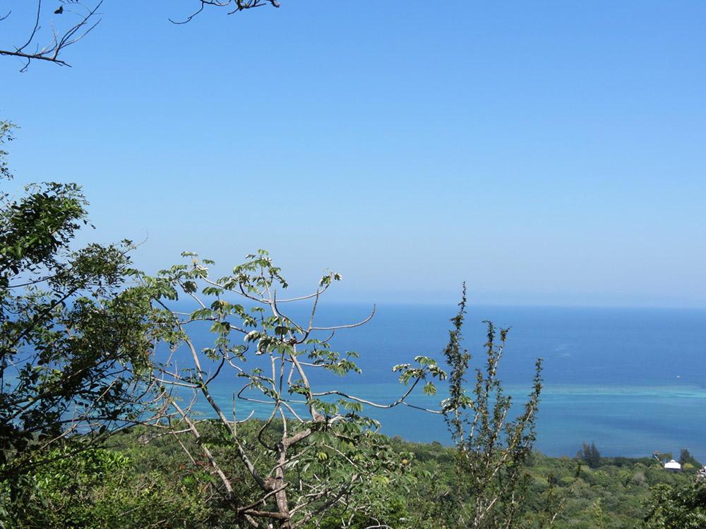 Roatan-Honduras-property-roatanlife16-530-5.jpg