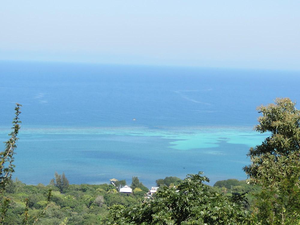 Roatan-Honduras-property-roatanlife16-530-6.jpg