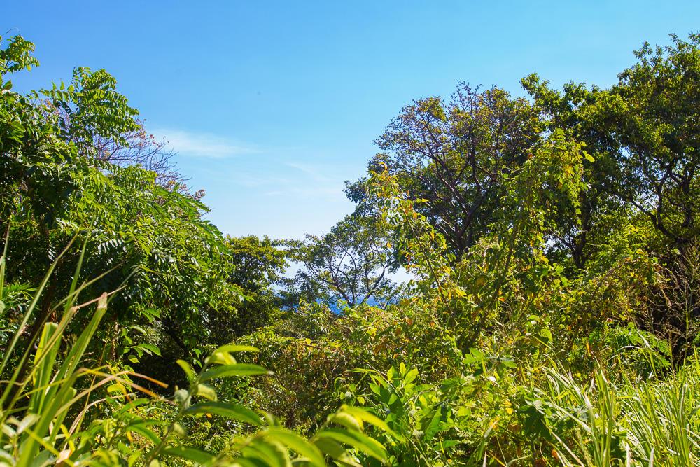 Roatan-Honduras-property-roatanlife18-258-9.jpg