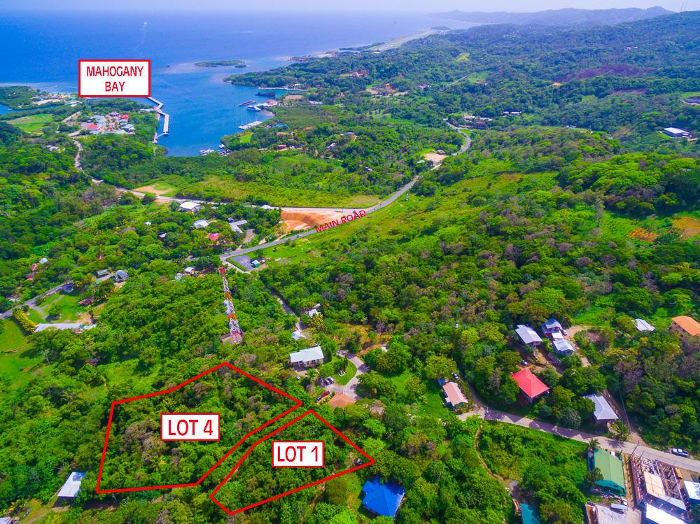 Roatan-Honduras-property-roatanlife18-469-3.jpg