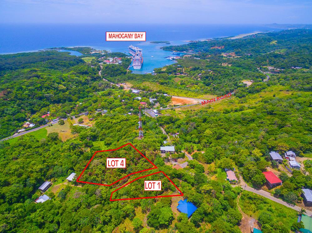 Roatan-Honduras-property-roatanlife18-469-4.jpg
