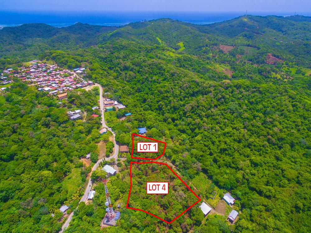 Roatan-Honduras-property-roatanlife18-469-5.jpg