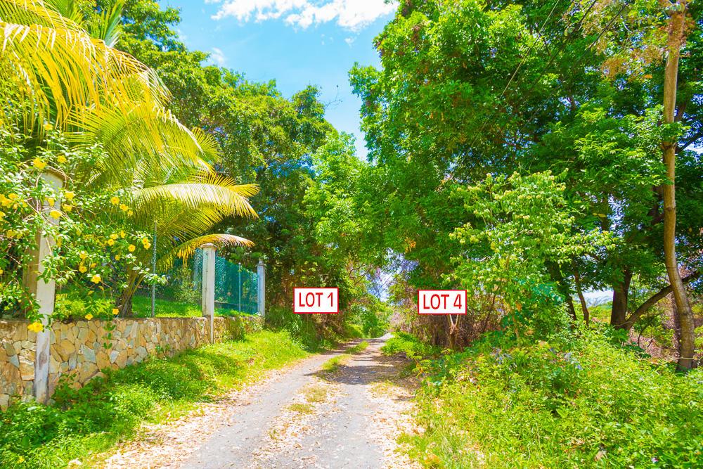 Roatan-Honduras-property-roatanlife18-469-6.jpg
