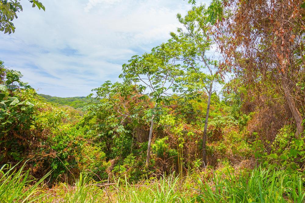 Roatan-Honduras-property-roatanlife18-469-8.jpg