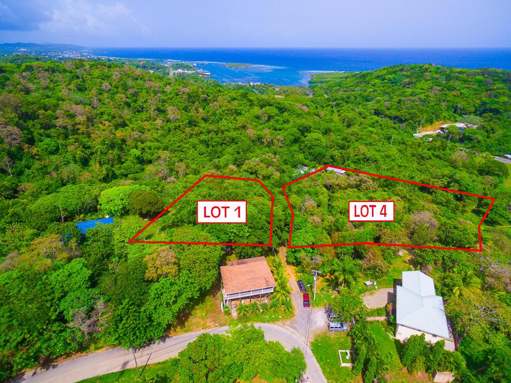 Roatan-Honduras-property-roatanlife18-469.jpg