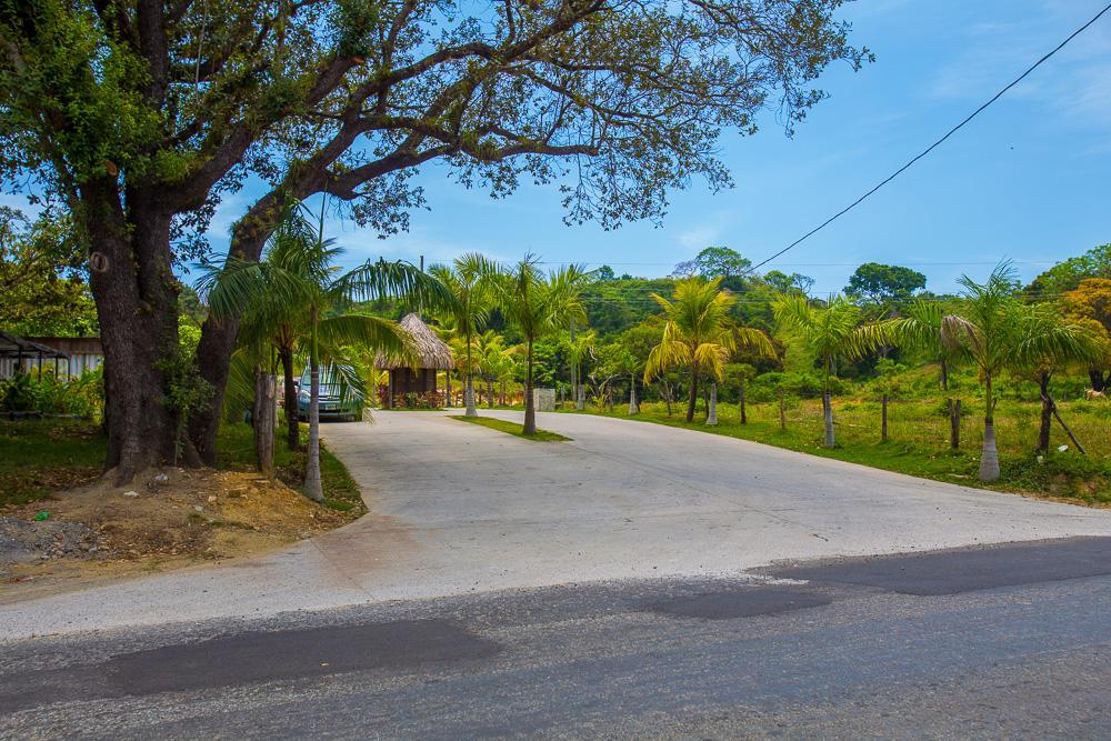Roatan-Honduras-property-roatanlife18-292-5.jpg