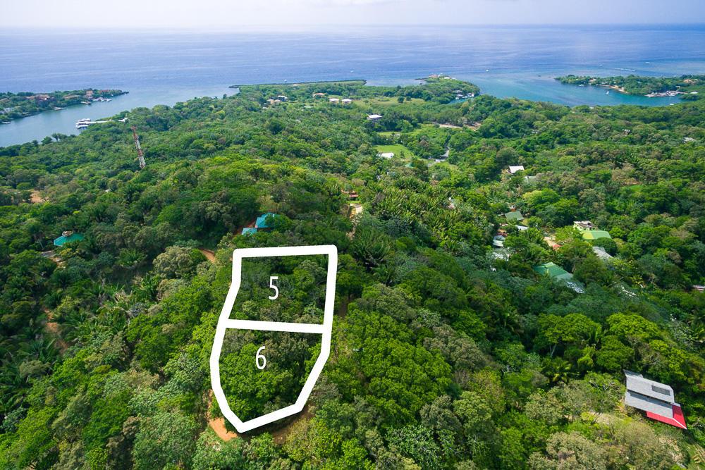 Roatan-Honduras-property-roatanlife16-264-2.jpg