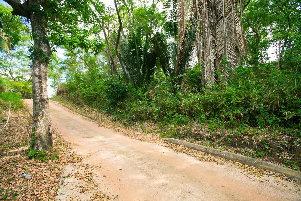 Roatan-Honduras-property-roatanlife16-264-4.jpg